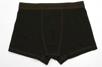 2136012 Harvast Northeasternes boxershorts